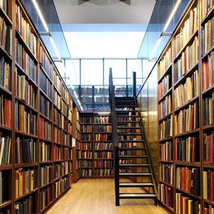 Библиотеки Вознесенского